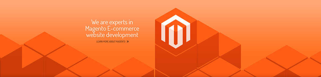 Certified Magento Development Company in Noida/ Delhi